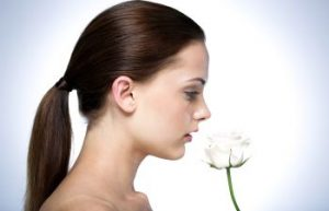 girl smelling a white rose